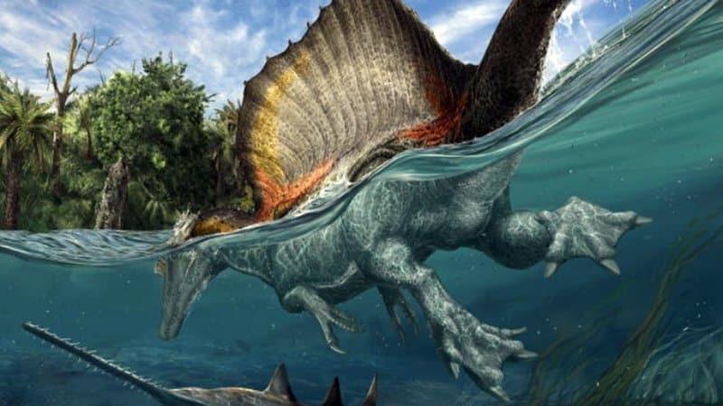 Top 5 Los 5 Dinosaurios Mas Peligrosos Top 5 Viajemos en el tiempo y hablemos de algunos de los animales más peligrosos que vagaron por el planeta. los 5 dinosaurios mas peligrosos